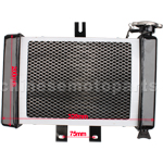Small Radiator for 200cc-250cc Water-cooled ATV, Dirt Bike & Go Kart